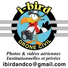 logo.ibird
